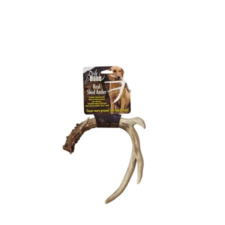 Real Shed Antler, Allows for finish training of your shed dog By Dog Bone from (Best Bongs In The World For Sale)