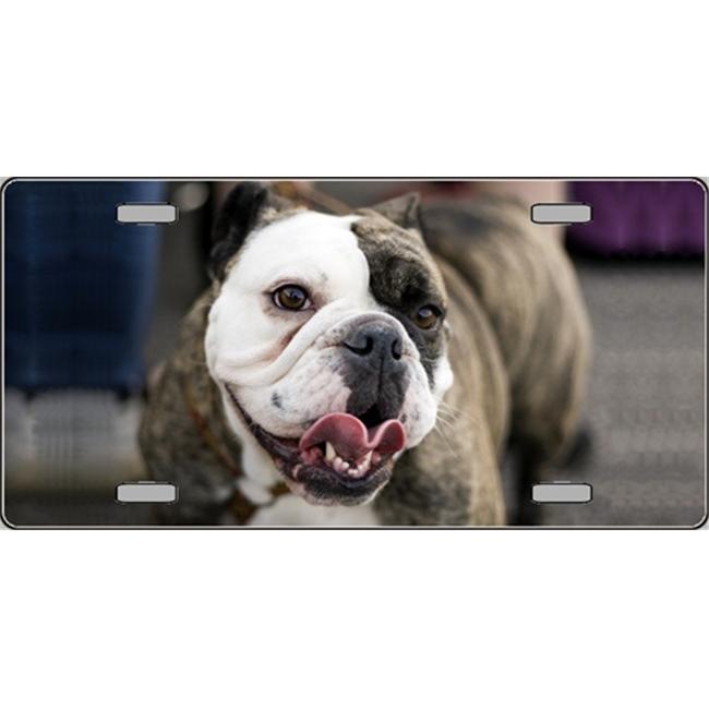 LP-2161 Bulldog Dog Pet Novelty License Plates- Full Color ...