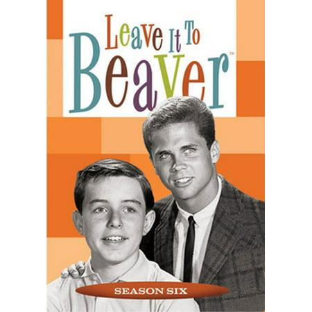Leave It To Beaver: Season 6 - Larry Harvey
