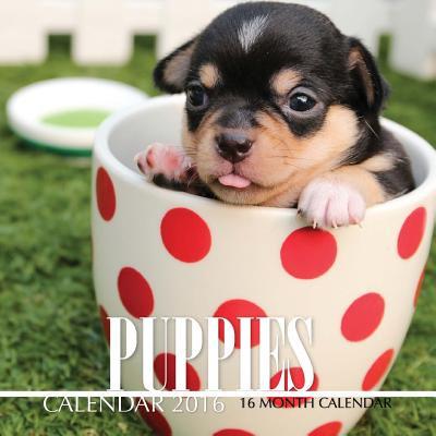 Puppies Calendar 2016 : 16 Month Calendar ()