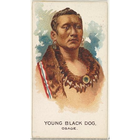 Young Black Dog Osage from the American Indian Chiefs series (N2) for Allen & Ginter Cigarettes Brands Poster Print (18 x