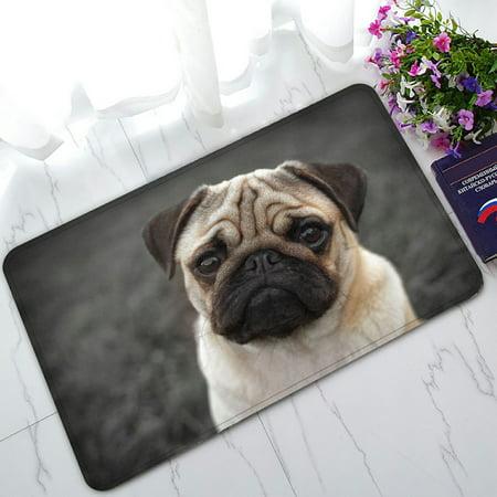 PHFZK Animal Doormat, Portrait of Beautiful Pug Puppy Doormat Outdoors/Indoor Doormat Home Floor Mats Rugs Size 30x18 inches