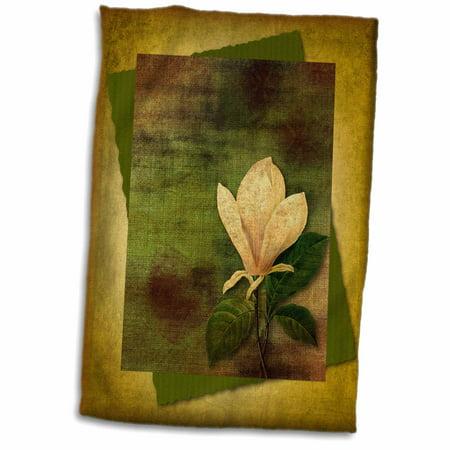 Magnolia Bath Towel (3dRose Vintage Magnolia - Towel, 15 by 22-inch)