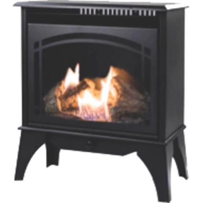 World Marketing 3232915 Dual Fuel Gas Stove Heater