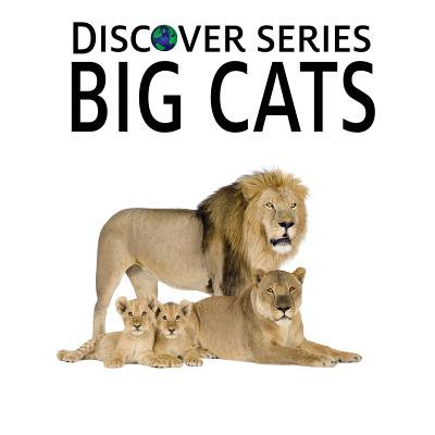 Children Series - Big Cats : Discover Series Picture Book for Children