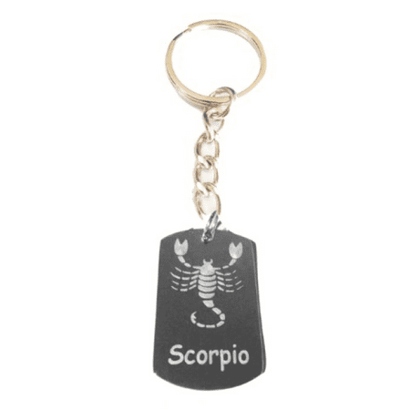 Zodiac Signs Sign Scorpio Scorpion Logo - Metal Ring Key Chain Keychain (Zodiac Key)