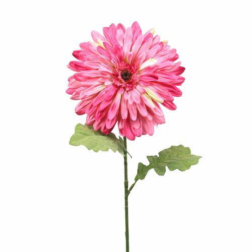 "Teters Floral 35"" Xl Dinner Plate Dahlia"