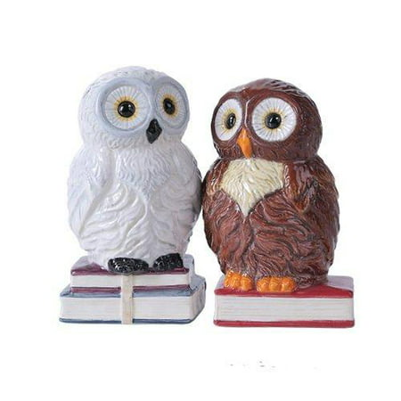 4.75 inches Book Owls Hedwig Magnetic Salt and Pepper Shaker Kitchen Set - Hedwig Owl