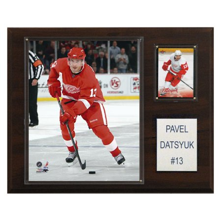 C&I Collectables NHL 12x15 Pavel Datsyuk Detroit Red Wings Player Plaque (Wings Plaque)