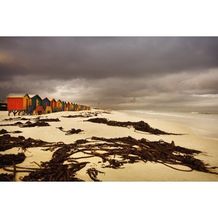 Changing Huts Along The Beach Cape Town South Africa Posterprint
