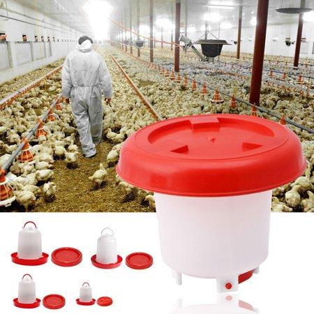 Directer 1pc Chicken Feeder Drinker Poultry Chick Hen Quail Bantam