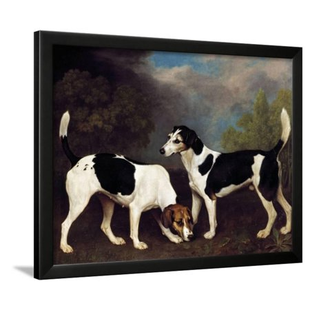 Anime Couples Black And White (A Couple of Foxhounds by George Stubbs Framed Print Wall)