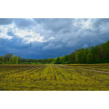Canvas Print Nature Field Clouds Sky Farm Rural Landscape Stretched Canvas 10 x - Sky Farm