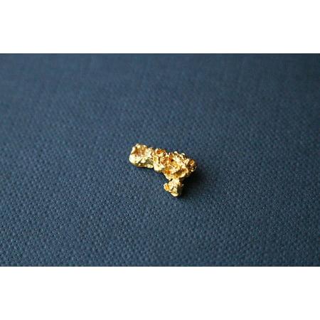 LAMINATED POSTER Nugget Gold Nugget Natural Gold Gold Poster Print 11 x (Natural Gold Nugget)