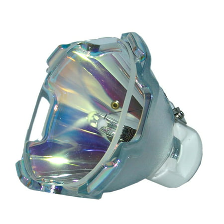 Lutema Economy for Everest RLC-043 Projector Lamp (Bulb Only) - image 5 of 5