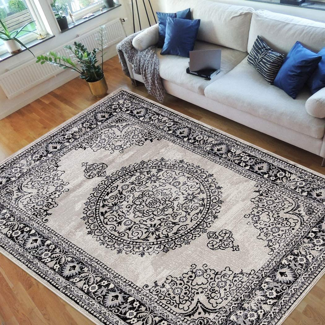 HR Traditional Rug for Living Room Antiqued Oriental ...