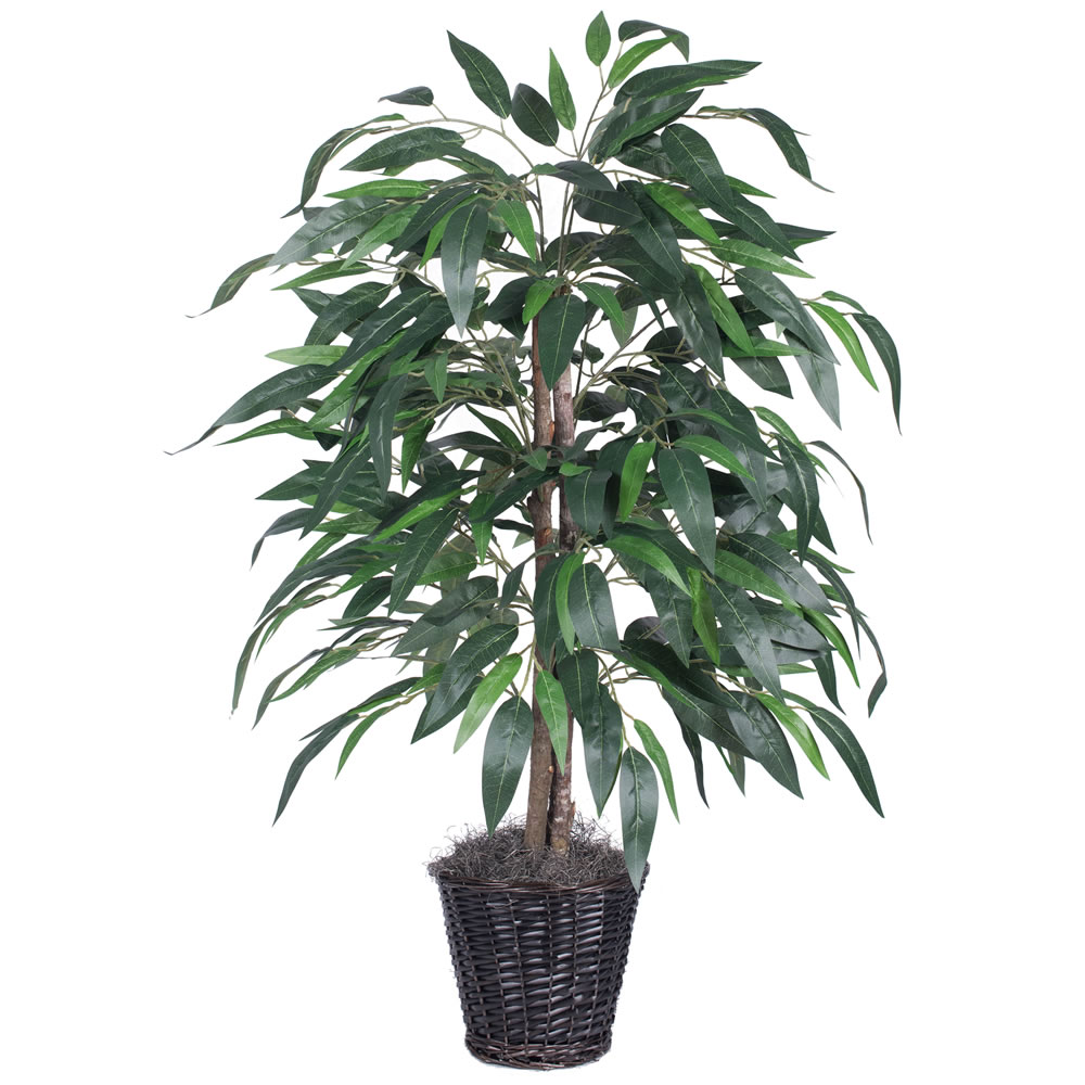 Vickerman 4' Artificial Mango Bush in a Rattan Basket