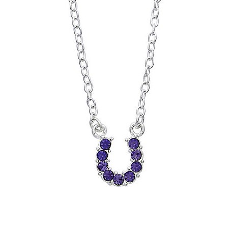 Horseshoe Necklace with Crystals Purple