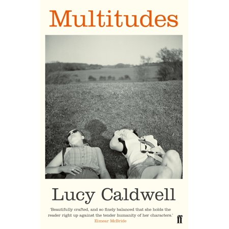 Multitudes : Stories (Multitudes Multitudes In The Valley Of Decision)