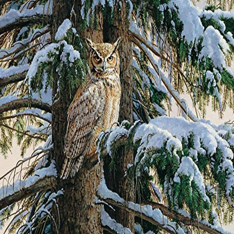 Snowy Perch, A 1000 Piece Jigsaw Puzzle by Cobble Hill