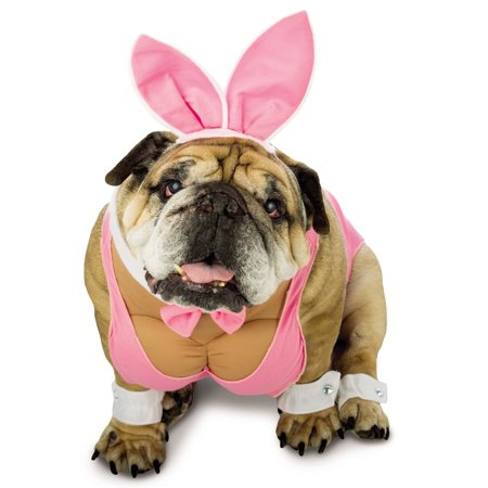 Zelda Hunny Bunny Pink Funny Playboy Bunny Dog Pet Halloween Costume - Dog Bunny Costumes