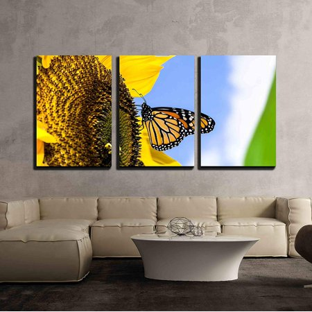 wall26 - 3 Piece Canvas Wall Art - Female Monarch Butterfly Danaus Plexippus on a Sunflower Helianthus Annuus - Modern Home Decor Stretched and Framed Ready to Hang - 24