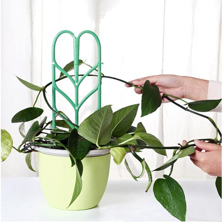 3.9*14 Inch Plant Support Mini Climbing Frame plants growth Pot Garden Green 3PC Pvc Plant Support