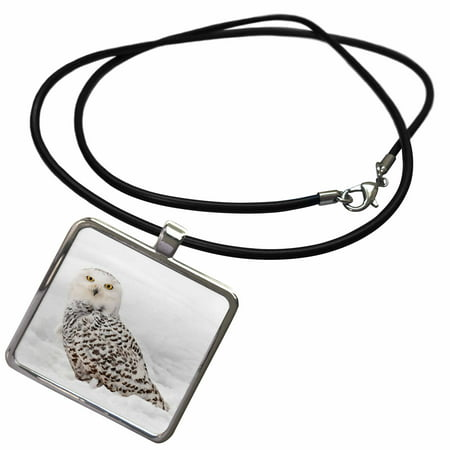 3dRose Snowy Owl on snow, Montana - Necklace with Pendant (ncl_279187_1)