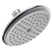 Hansgrohe 27466 Raindance E Rain 2.5 GPM Shower Head