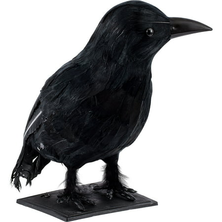 Black Crow, Plastic Prop Measures 12 Inches by 8 Inches by 8 Inches