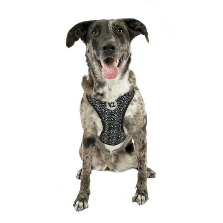 vibrant life black flex knit body dog harness large 21 24 in. Black Bedroom Furniture Sets. Home Design Ideas