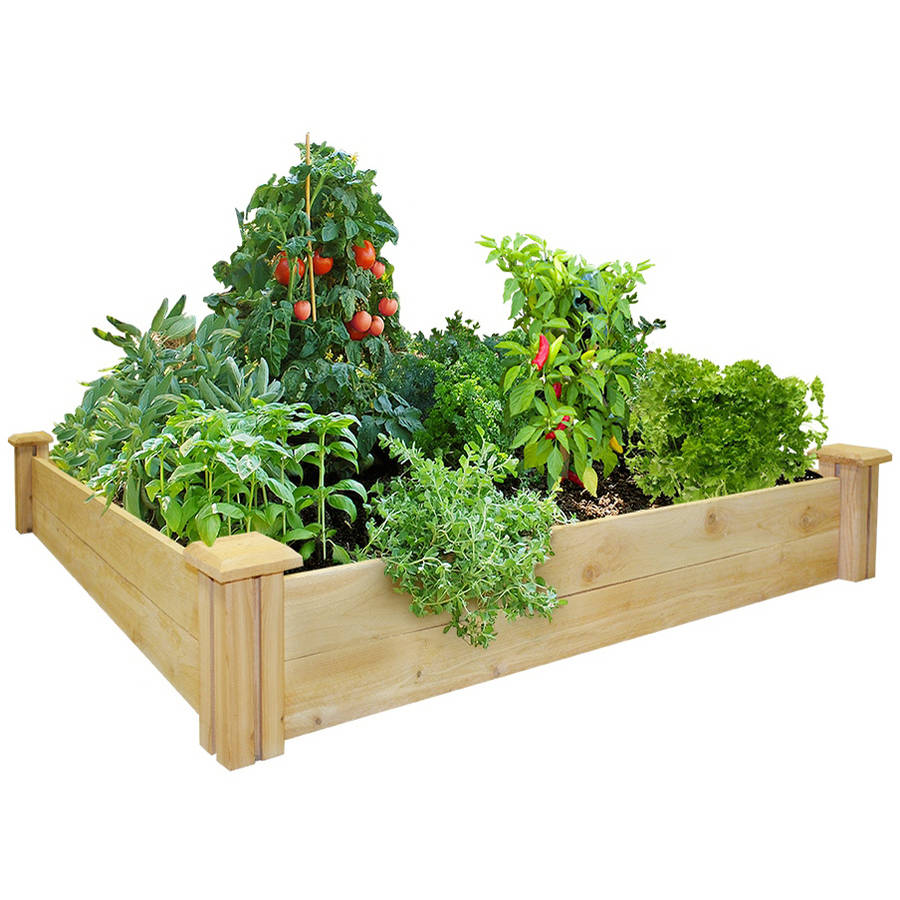 "Greenes Fence 4' x 4' x 7"" Cedar Raised Garden Bed"