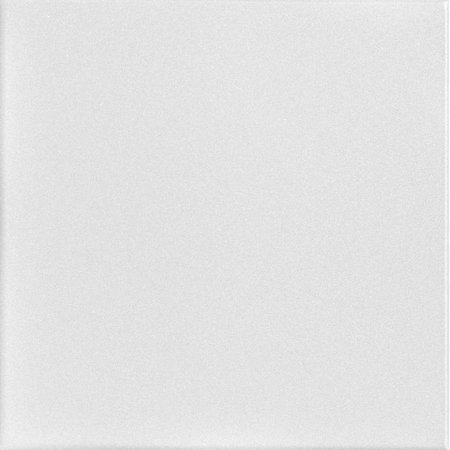 1 Inch Sq Tiles (Basic 1.6 ft. x 1.6 ft. Foam Glue-up Ceiling Tile in Plain White (21.6 sq. ft. / case) )