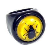 R0016-7 Ring Blue Beetle Black Ring with Yellow Back Size 7