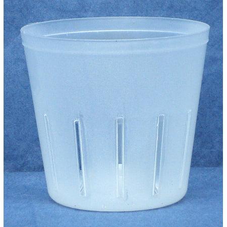 Clear Plastic Pot for Orchids 3 inch Diameter - Quantity
