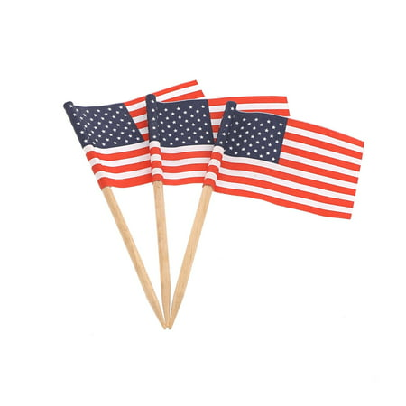 Royal American Flag Picks, 100 Ct - Flag Picks