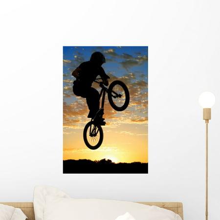 Airborne Bike Wall Mural Decal Sticker, Wallmonkeys Peel & Stick Vinyl Graphic (18 in H x 12 in W) ()