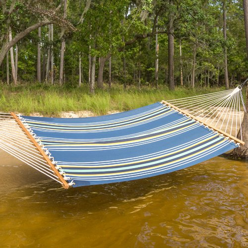 Freeport Park Cara Stripe Double Tree Hammock