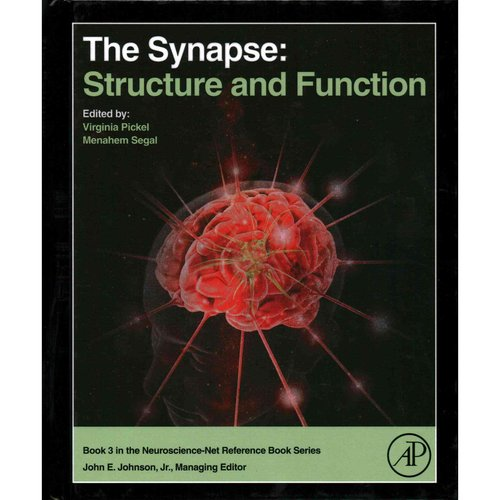The Synapse: Structure and Function