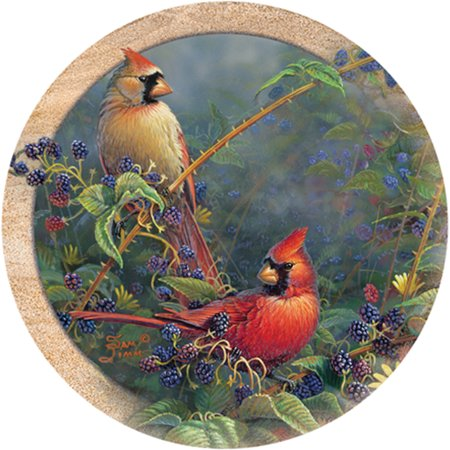 Thirstystone Drink Coasters Set, Cardinal Pair