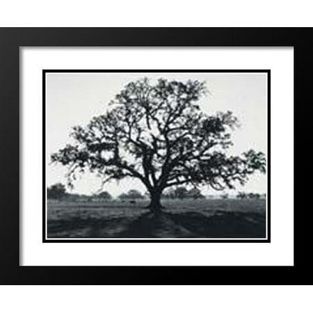 FrameToWall - Ansel Adams Framed and Double Matted Art Print 25x29
