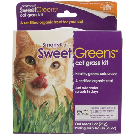 SmartyKat ® Sweet Greens ® Kit Cat Grass Grow Kit