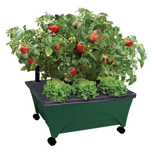 City Picker Raised Bed Grow Box – Self Watering and Improved Aeration – Mobile Unit with Casters - Hunter Green