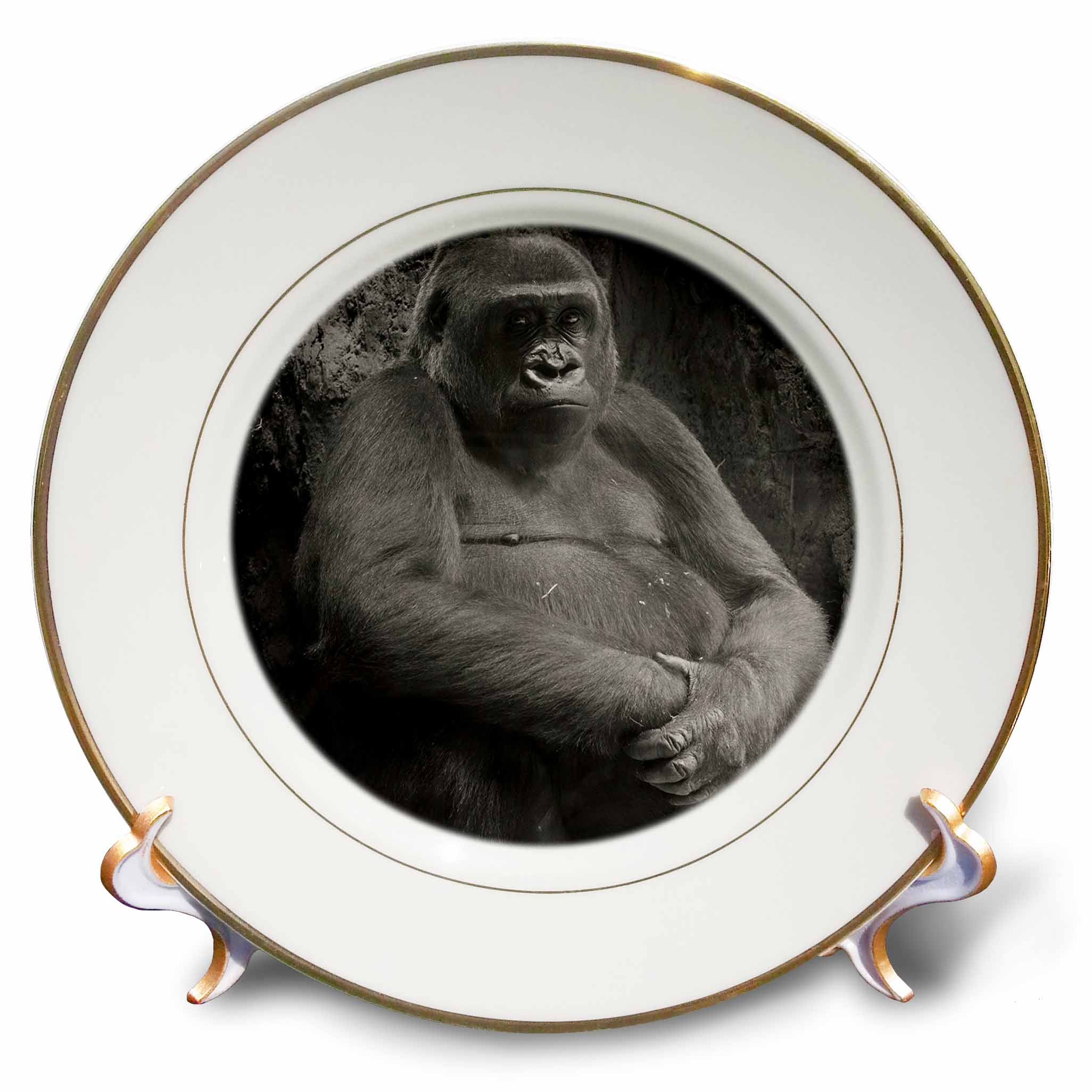 3dRose Black and white picture of a gorilla, Porcelain Plate, 8-inch