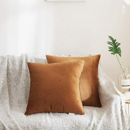 Acanva Set of 2, Velvet Soft Decorative Throw Pillow, 18