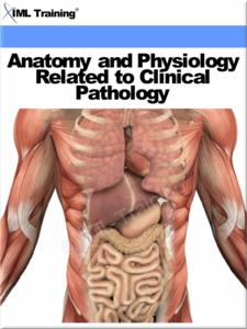 Ebook Anatomy And Physiology