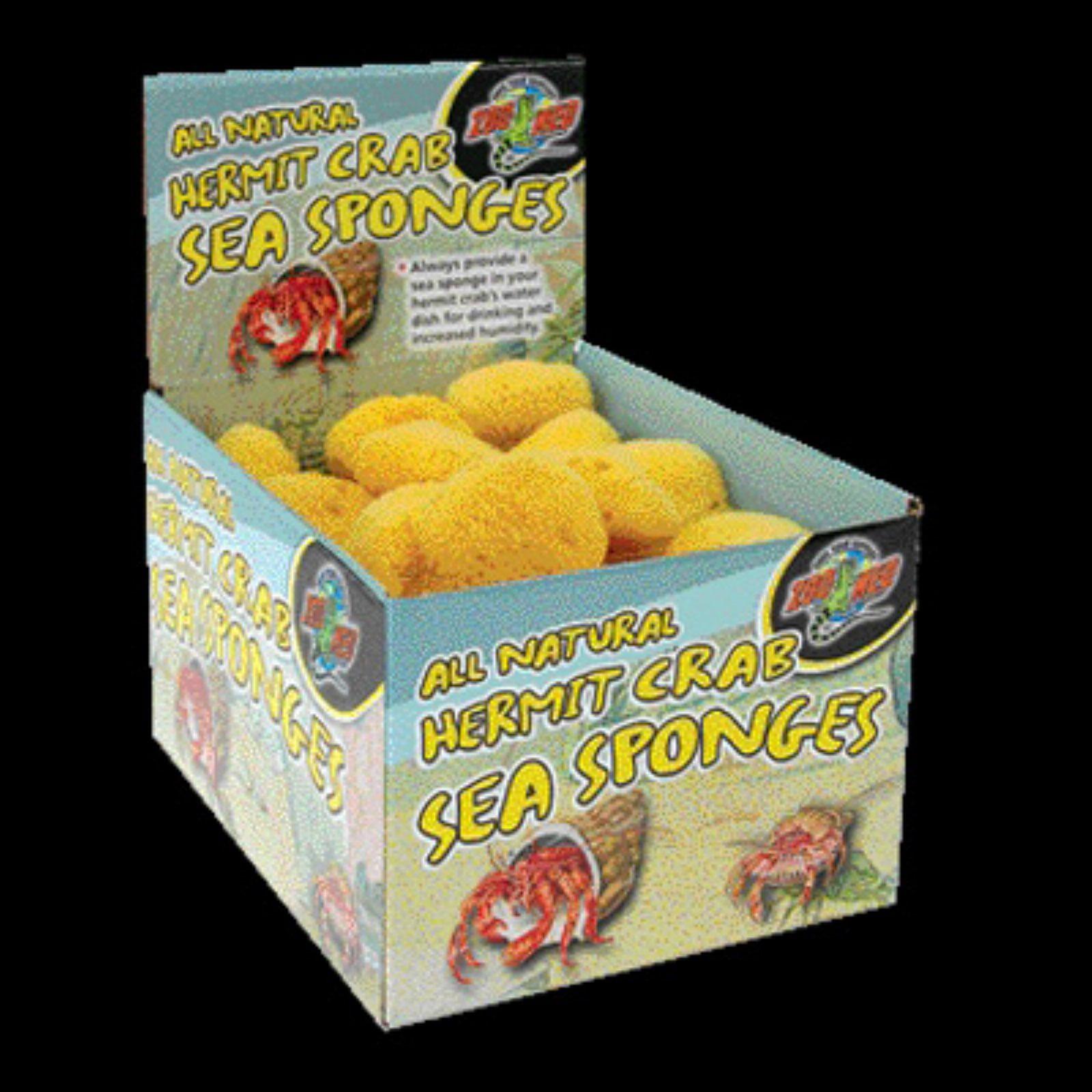 Zoo Med All Natural Hermit Crab Sponge - 36 pc. Display Pack