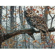 Dimensions Counted Cross-Stitch Kit, Wise Owl