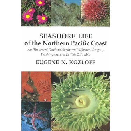 Seashore Life Of The Northern Pacific Coast  An Illustrated Guide To Northern California  Oregon  Washington  And British Columbia