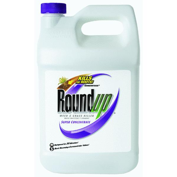 Roundup Weed & Grass Killer Super Concentrate, 1gal